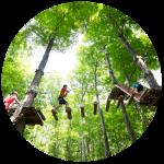 treetop_trekking